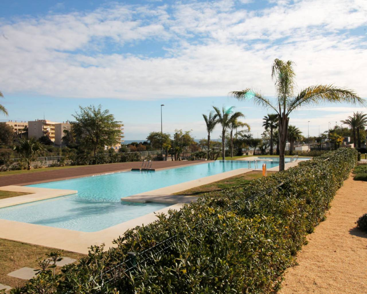 Holiday rental - Apartment - Pilar de la Horadada - Mil Palmeras