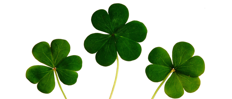 Vier St. Patrick's Day in Orihuela Costa